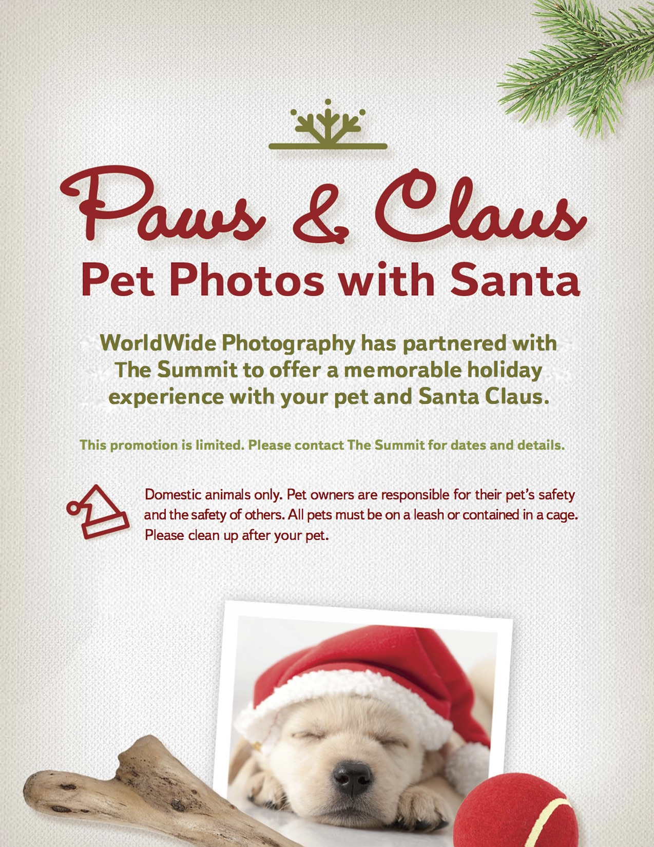 Pet-Photos-with_Santa